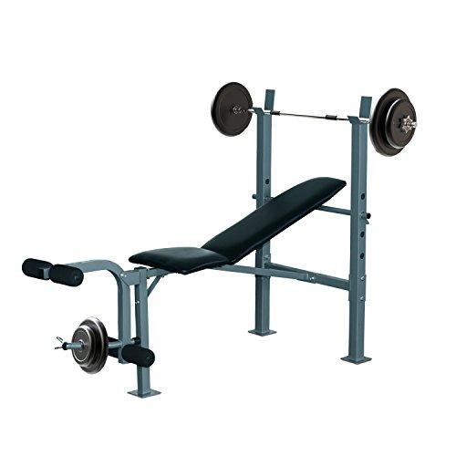 HOMCOM Banco de Musculación Banco de Pesas Maquina de Fitness Entrenar Musculos 165x68x114cm...