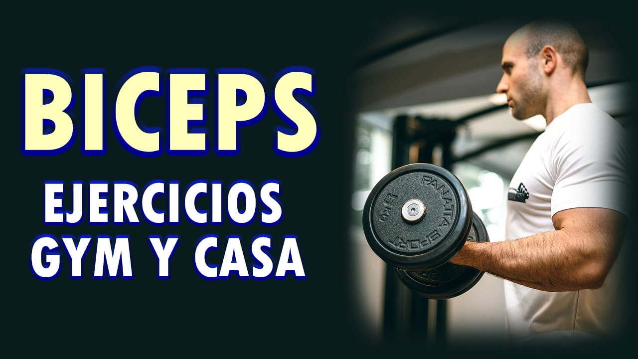 MEJORES EJERCICIPS BICEPS